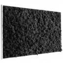 Tableau végétal stabilisé Lichen Noir Maxi 114x64cm