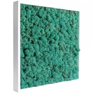 http://www.materiel-mur-vegetal.fr/426-811-thickbox/tableau-vegetal-stabilise-lichen-pacific-40x40cm.jpg