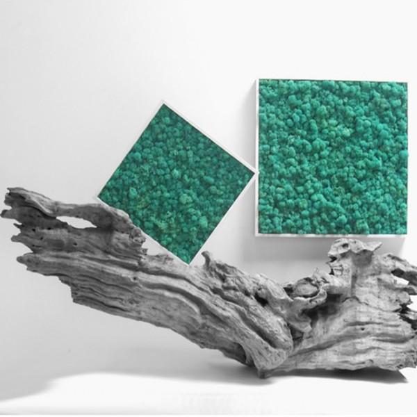 tableau v g tal stabilis lichen pacific 40x40cm mat riel mur v g. Black Bedroom Furniture Sets. Home Design Ideas