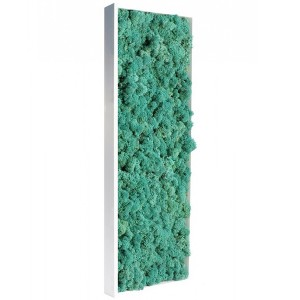 http://www.materiel-mur-vegetal.fr/428-814-thickbox/tableau-vegetal-stabilise-lichen-pacific-slim-60x18cm.jpg