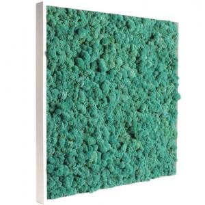 http://www.materiel-mur-vegetal.fr/429-816-thickbox/tableau-vegetal-stabilise-lichen-pacific-60x60cm.jpg