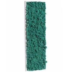 http://www.materiel-mur-vegetal.fr/431-819-thickbox/tableau-vegetal-stabilise-lichen-pacific-demi-maxi-114x36cm.jpg