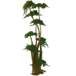 http://www.materiel-mur-vegetal.fr/452-840-thickbox/arbre-bonsai-juniperus-stabilise-190cm.jpg
