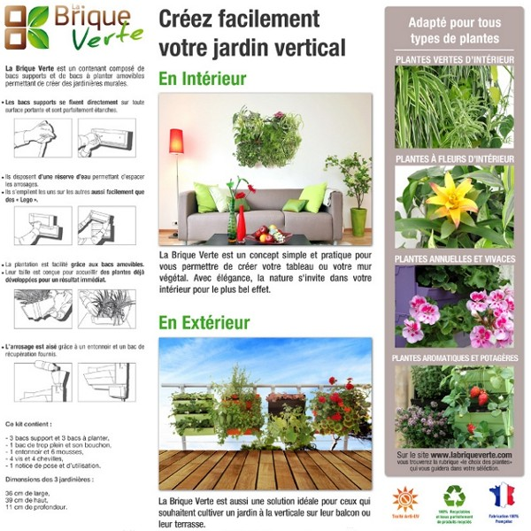 Mur vegetal exterieur quelles plantes for Mur vegetal exterieur quelles plantes