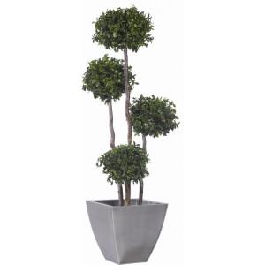 arbre 4 boules de buis stabilis 180cm mat riel mur v g. Black Bedroom Furniture Sets. Home Design Ideas
