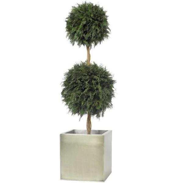 topiaire 2 boules de thuya vert stabilis 140cm mat riel mur v g. Black Bedroom Furniture Sets. Home Design Ideas