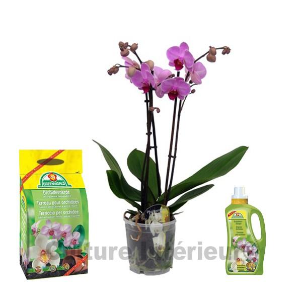 Pack orchid e rose 2 branches terreau engrais - Terreau pour orchidee ...