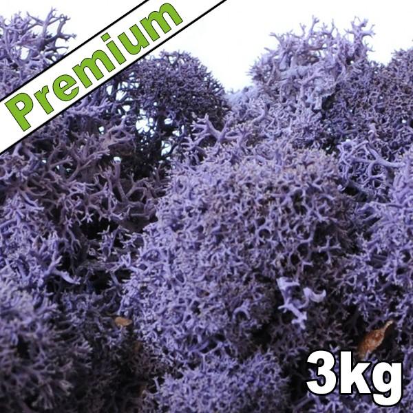 lichen scandinave stabilis violet 3kg premium mat riel mur v g. Black Bedroom Furniture Sets. Home Design Ideas