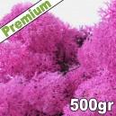 Lichen Scandinave stabilisé Rose 500gr Premium