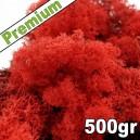 Lichen Scandinave stabilisé Rouge 500gr Premium