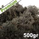 Lichen Scandinave stabilisé Noir 500gr Premium