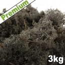 Lichen Scandinave stabilisé Noir 3kg Premium