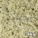 Lichen Scandinave stabilisé Naturel 4kg