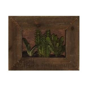 http://www.materiel-mur-vegetal.fr/865-1517-thickbox/cadre-vegetal-wooden-26x20cm-cactees-mix.jpg