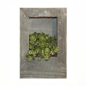 http://www.materiel-mur-vegetal.fr/882-1570-thickbox/cadre-vegetal-wooden-gris-15x10cm-avec-succulente.jpg