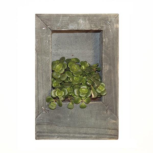 Cadre v g tal wooden gris 15x10cm avec succulente for Flowall pas cher