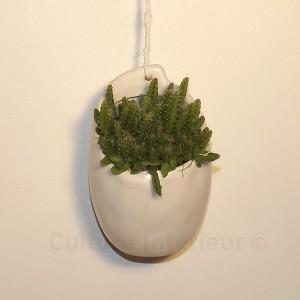 http://www.materiel-mur-vegetal.fr/890-1588-thickbox/plante-suspendue-avec-pot-blanc-mat-o8cm-hauteur-8cm.jpg
