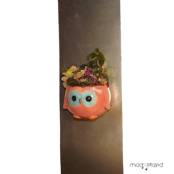 Cache pot magn tique 8cm hiboux rose mat riel mur v g - Cache pot a accrocher au mur ...