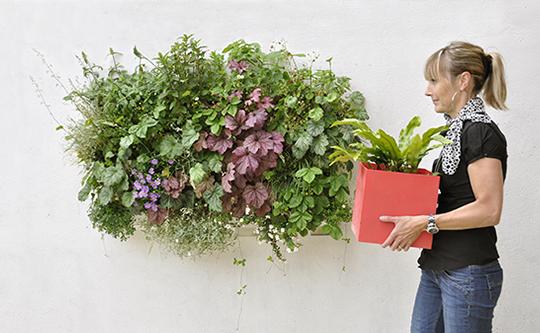 Pack 4 kits mur v g tal ext rieur brique verte 36x39cm for Mur vegetal exterieur en kit