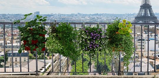 Pack 4 kits mur v g tal ext rieur brique verte 36x39cm for Plantes mur vegetal exterieur