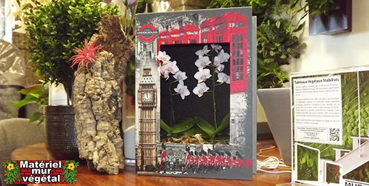 Livre v g tal london 35x26cm pr t planter cadre for Livre decoration interieur maison