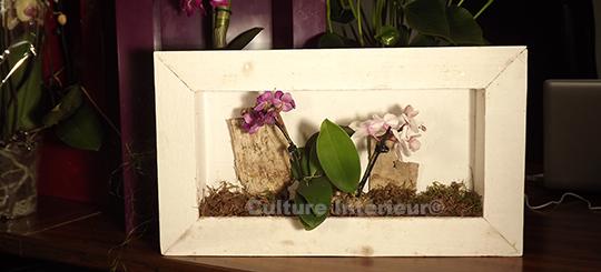 Cadre végétal Wooden Blanc avec Orchidées