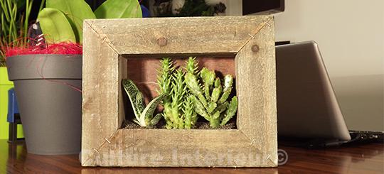 Cadre végétal Wooden avec mix de cactus