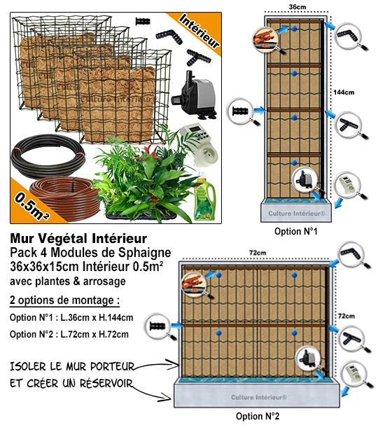 Kit 4 Modules Sphaigne 36x36x15cm Intérieur avec 20 plantes & irrigation