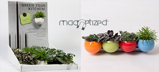 Cache Pot Magnétique Ø8cm pour la décoration