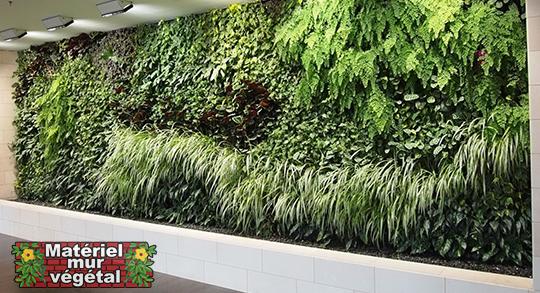 pack int rieur 1m modules de sphaigne 36x36x16cm avec plantes irrigation mat riel mur. Black Bedroom Furniture Sets. Home Design Ideas