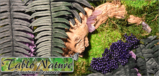 Cadre végétal stabilisé Tablo'Nature Purple Crystal