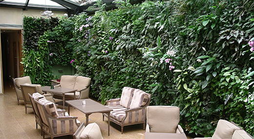 Mur végétal avec modules Vertiss