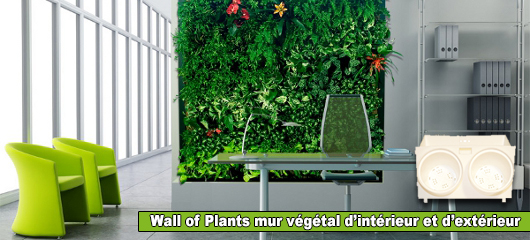Modules Wall of Plants pour mur v�g�tal d'int�rieur & d'ext�rieur