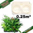 10 Modules Dual Pot Ø8cm Blanc 20x12,5cm avec 20 plantes d'extérieur