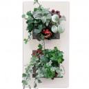Cadre végétal double vertical Blanc 52x30cm Garden and the City