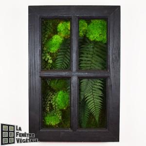 https://www.materiel-mur-vegetal.fr/1326-2730-thickbox/tableau-vegetal-stabilise-fenetre-vegetale-60x40cm-noir.jpg