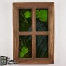 Tableau végétal stabilisé Fenêtre Végétale 60x40cm Chêne Clair