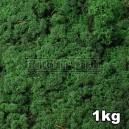 Lichen Scandinave stabilisé Vert Moyen 1kg