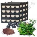 4 Kits Mur Végétal Flowall Noir 42x40cm avec plantes