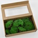 Mousse boule stabilisée Vert boite 40x20x10cm