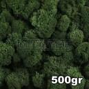 Lichen Scandinave stabilisé Vert Foncé 500gr