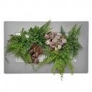 Cadre végétal Arden Flore Double Gris Perle 49x30cm