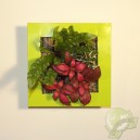 Cadre végétal Be Green Vert Anis 19x19cm avec Mix 3 Plantes